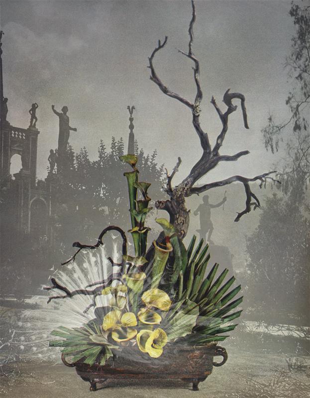 Marcus Bunyan. 'Desideratum' 2003