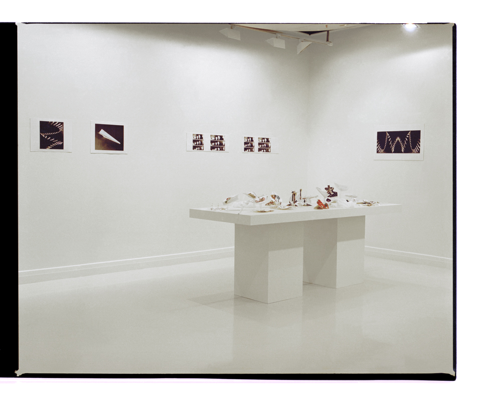 Exhibition view of Marcus Bunyan's installation 'Throw Hard and High' 2001